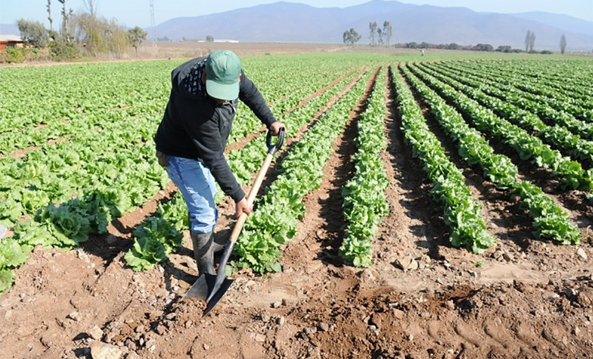 ¿Qué es producción y consumo sostenible?