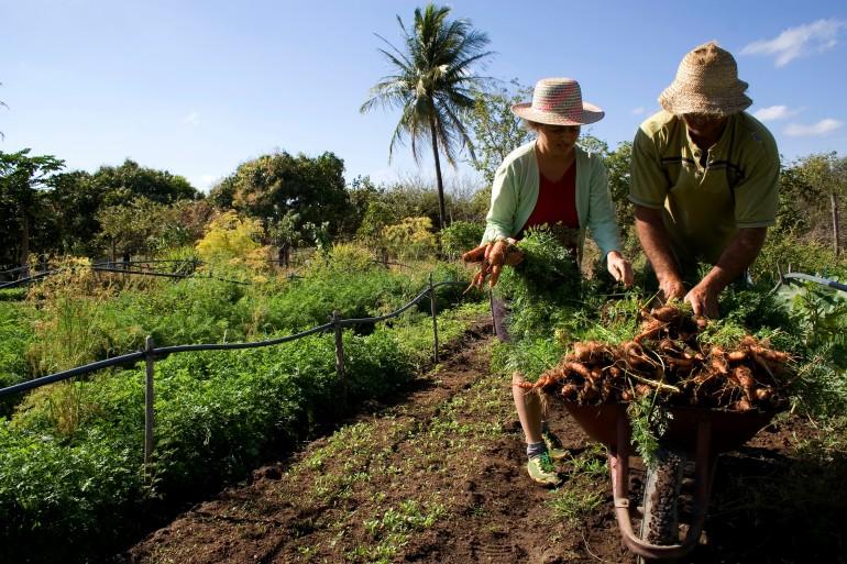 Producción, reforma agraria y objetivos para el desarrollo sostenible