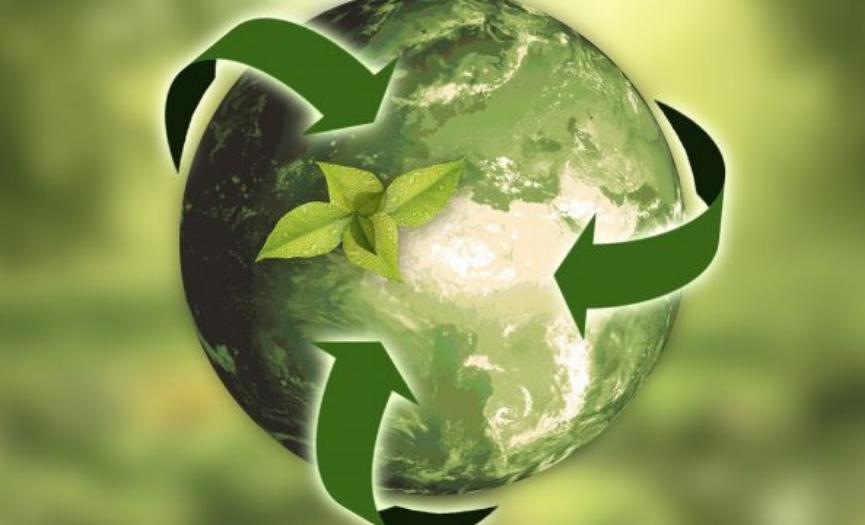 Propósitos ambientales para el año nuevo