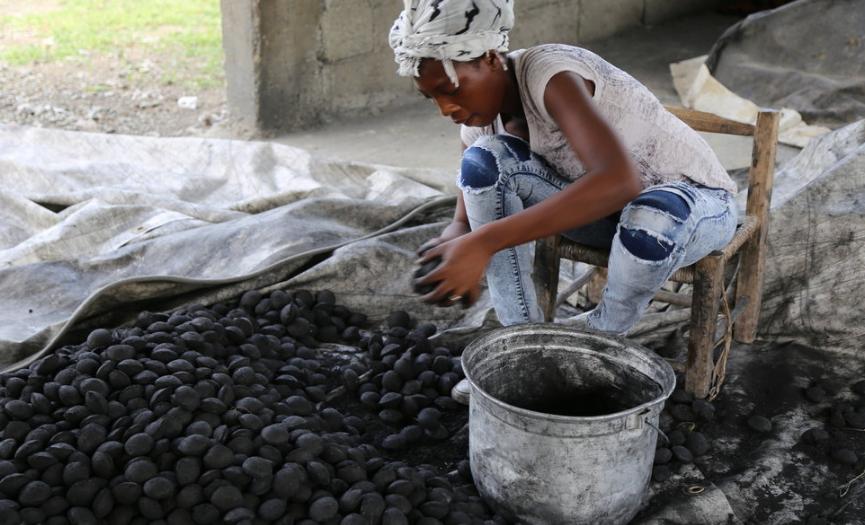 La demanda de carbón en Haití: insostenible para RD 2020