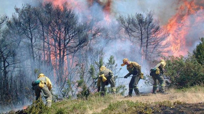 Incendio en los bosques, de carbón y sequía, combinación terrorífica